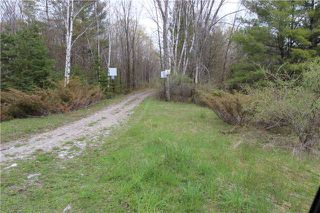 Photo 9: Lt 22 Maritime Road in Kawartha Lakes: Rural Bexley Property for sale : MLS®# X3793246