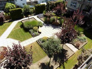 "Photo 12: 406 30525 CARDINAL Avenue in Abbotsford: Abbotsford West Condo for sale in ""Tamarind Westside"" : MLS®# R2185961"