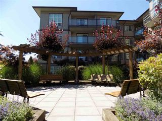 "Photo 14: 406 30525 CARDINAL Avenue in Abbotsford: Abbotsford West Condo for sale in ""Tamarind Westside"" : MLS®# R2185961"