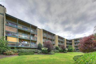 Photo 1: 116 3277 Quadra St in VICTORIA: SE Maplewood Condo for sale (Saanich East)  : MLS®# 768023