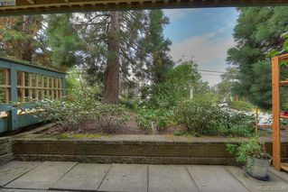 Photo 19: 116 3277 Quadra St in VICTORIA: SE Maplewood Condo for sale (Saanich East)  : MLS®# 768023
