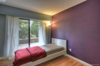 Photo 16: 116 3277 Quadra St in VICTORIA: SE Maplewood Condo Apartment for sale (Saanich East)  : MLS®# 768023
