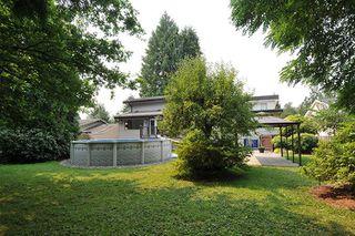 Photo 19: 12120 GLENHURST STREET in Maple Ridge: Cottonwood MR House for sale : MLS®# R2193088