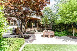 Photo 10: 376 W 22ND Avenue in Vancouver: Cambie House for sale (Vancouver West)  : MLS®# R2273060