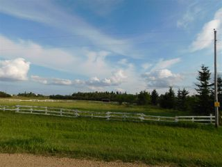 Photo 4: 57104 Hwy 38: Rural Sturgeon County Rural Land/Vacant Lot for sale : MLS®# E4122717