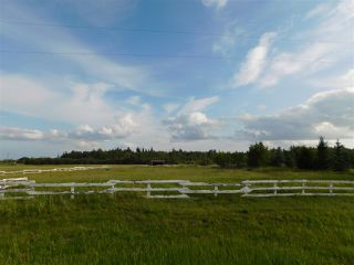 Photo 5: 57104 Hwy 38: Rural Sturgeon County Rural Land/Vacant Lot for sale : MLS®# E4122717