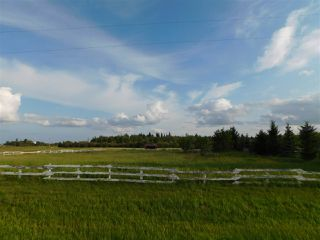 Photo 3: 57104 Hwy 38: Rural Sturgeon County Rural Land/Vacant Lot for sale : MLS®# E4122717