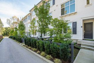 Main Photo: 24 8130 136A Street in Surrey: Bear Creek Green Timbers Townhouse for sale : MLS®# R2309293