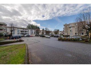 """Photo 2: 133 32830 GEORGE FERGUSON Way in Abbotsford: Central Abbotsford Condo for sale in """"Abbotsford Place"""" : MLS®# R2315898"""