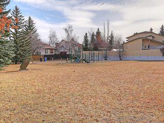 Photo 42: 99 BERNARD Court NW in Calgary: Beddington Heights Detached for sale : MLS®# C4215187