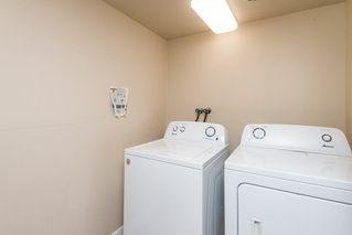 Photo 23: 207 14825 51 Avenue in Edmonton: Zone 14 Condo for sale : MLS®# E4140365