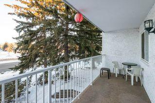 Photo 22: 207 14825 51 Avenue in Edmonton: Zone 14 Condo for sale : MLS®# E4140365