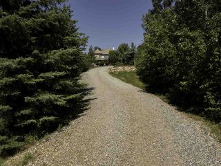 Photo 24: 26004 TWP RD 511A RD: Rural Parkland County House for sale : MLS®# E4143681