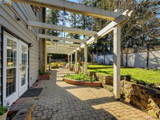 Photo 18: 1135 McBriar Ave in VICTORIA: SE Lake Hill Single Family Detached for sale (Saanich East)  : MLS®# 809509