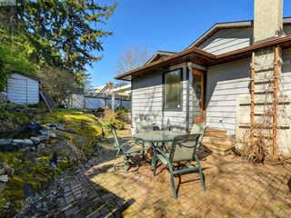 Photo 9: 1135 McBriar Ave in VICTORIA: SE Lake Hill Single Family Detached for sale (Saanich East)  : MLS®# 809509