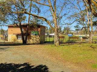 Photo 33: 1135 McBriar Ave in VICTORIA: SE Lake Hill Single Family Detached for sale (Saanich East)  : MLS®# 809509