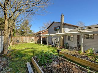 Photo 31: 1135 McBriar Ave in VICTORIA: SE Lake Hill Single Family Detached for sale (Saanich East)  : MLS®# 809509