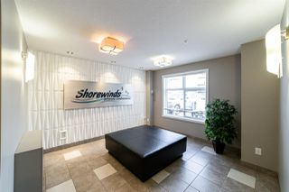 Photo 26: 427 6076 SCHONSEE Way in Edmonton: Zone 28 Condo for sale : MLS®# E4149273