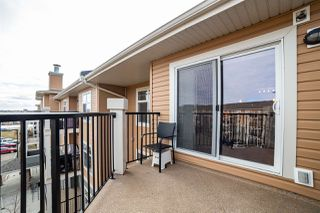 Photo 25: 427 6076 SCHONSEE Way in Edmonton: Zone 28 Condo for sale : MLS®# E4149273