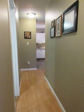 Photo 15: 213 30 ALPINE Place: St. Albert Condo for sale : MLS®# E4157535