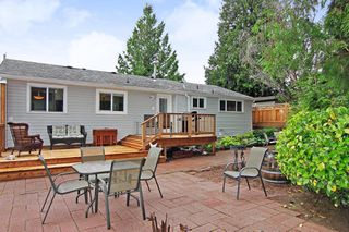 Photo 20: 33447 LYNN Avenue in Abbotsford: Central Abbotsford House for sale : MLS®# R2374035