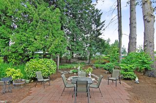 Photo 19: 33447 LYNN Avenue in Abbotsford: Central Abbotsford House for sale : MLS®# R2374035