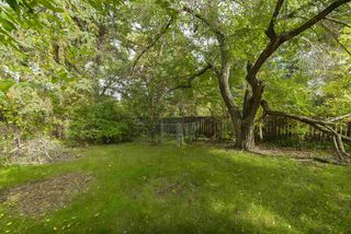 Photo 7: 44 FAIRWAY Drive in Edmonton: Zone 16 House for sale : MLS®# E4177644