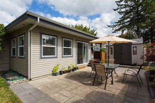 "Photo 14: 213 3665 244 Street in Langley: Aldergrove Langley Manufactured Home for sale in ""Langley Grove Estates"" : MLS®# R2420727"