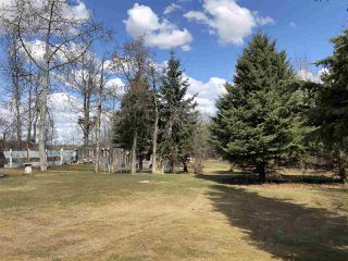 Photo 31: 44 475013 RGE RD 243: Rural Wetaskiwin County House for sale : MLS®# E4188588