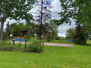 Photo 5: 10054 94 Street in Edmonton: Zone 13 House for sale : MLS®# E4194289