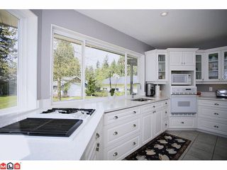 Photo 5: 4637 198A Street in Langley: Langley City House for sale : MLS®# F1112685