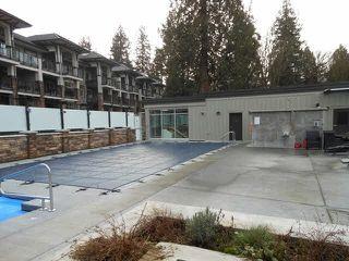"Photo 20: 210 15175 36 Avenue in Surrey: Morgan Creek Condo for sale in ""Edgewater"" (South Surrey White Rock)  : MLS®# F1441146"