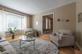 Photo 16: 547 Wallace Street in Burlington: Brant House (Bungalow) for sale : MLS®# W3214999