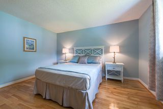 Photo 28: 547 Wallace Street in Burlington: Brant House (Bungalow) for sale : MLS®# W3214999