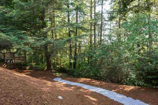 "Photo 20: 10648 SANTA MONICA Drive in Delta: Nordel House for sale in ""Canterbury Heights"" (N. Delta)  : MLS®# R2073318"