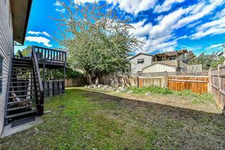 Photo 19: 12883 115A Avenue in Surrey: Bridgeview House for sale (North Surrey)  : MLS®# R2107121