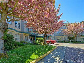 Photo 17: 310 1485 Garnet Road in VICTORIA: SE Cedar Hill Condo Apartment for sale (Saanich East)  : MLS®# 377539