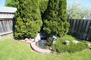 Photo 5: 385 Jacques Avenue - Gorgeous 3 Bedroom Bungalow