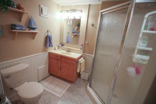 Photo 23: 385 Jacques Avenue - Gorgeous 3 Bedroom Bungalow