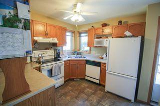 Photo 13: 385 Jacques Avenue - Gorgeous 3 Bedroom Bungalow