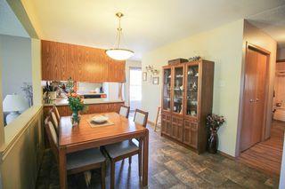 Photo 11: 385 Jacques Avenue - Gorgeous 3 Bedroom Bungalow