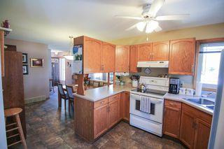 Photo 12: 385 Jacques Avenue - Gorgeous 3 Bedroom Bungalow