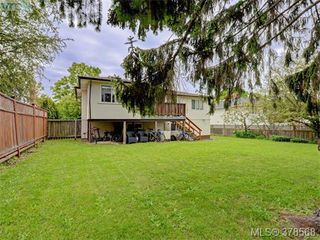 Photo 16: 1594 Mortimer Street in VICTORIA: SE Mt Tolmie Single Family Detached for sale (Saanich East)  : MLS®# 378568