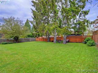 Photo 15: 1594 Mortimer Street in VICTORIA: SE Mt Tolmie Single Family Detached for sale (Saanich East)  : MLS®# 378568