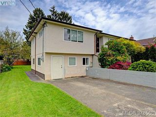 Photo 17: 1594 Mortimer Street in VICTORIA: SE Mt Tolmie Single Family Detached for sale (Saanich East)  : MLS®# 378568