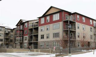 Main Photo: 216 105 AMBLESIDE Drive SW in Edmonton: Zone 56 Condo for sale : MLS®# E4135256