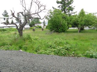 Photo 7: 730 & 770 Alder St in CAMPBELL RIVER: CR Campbell River Central Land for sale (Campbell River)  : MLS®# 807733