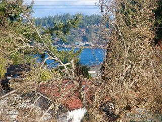 Photo 4: 730 & 770 Alder St in CAMPBELL RIVER: CR Campbell River Central Land for sale (Campbell River)  : MLS®# 807733