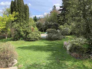 Photo 17: 9688 YOUNG Road in Chilliwack: Chilliwack N Yale-Well House for sale : MLS®# R2348257