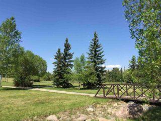 Photo 29: 17 BUTTERWORTH Point in Edmonton: Zone 14 House Half Duplex for sale : MLS®# E4149840